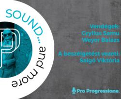 Pp Sound Vendegek Logoval