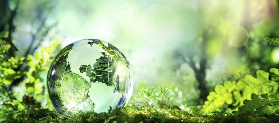 Sustainability Foto